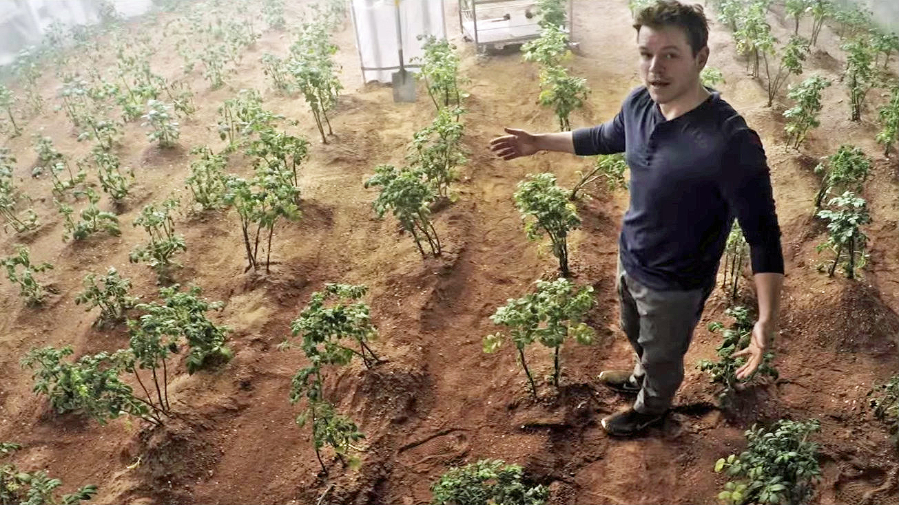 Researchers grow crops in simulated Martian and Lunar soil