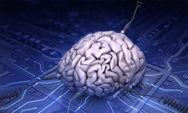 Daily Roundup: Apple's new Macbook, AI that mimics the brain and more!