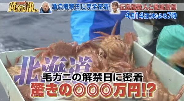 一日で229万円!『黄金伝説』北海道カニ漁の「一日あたりの売上高」がスゴすぎるとネット衝撃