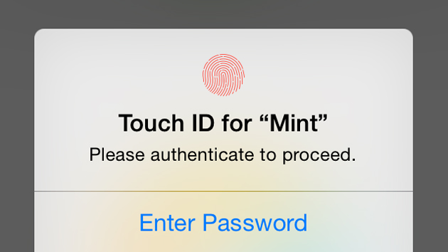 Mint's Touch ID check