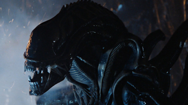 An 'Alien' movie is coming from the creator of 'District 9′