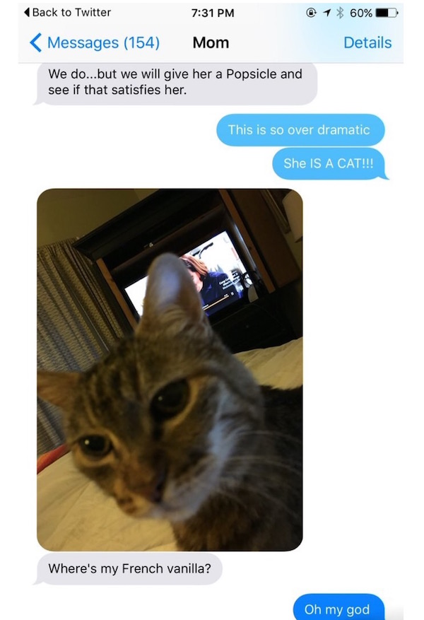 Mom Scolds Daughter For Eating Ice Cream Meant For The Cat