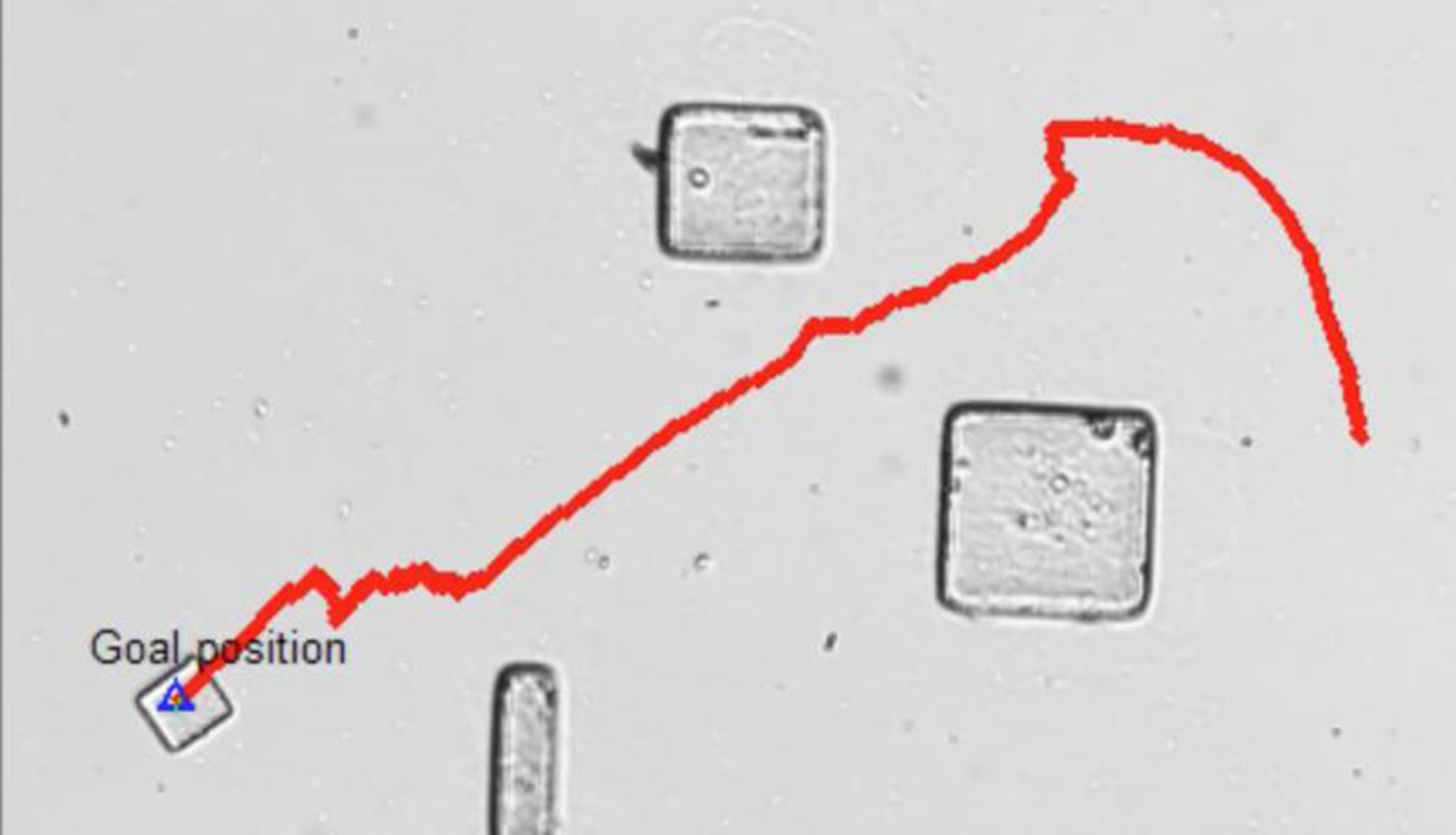 Microrobots use the power of bacteria to avoid obstacles