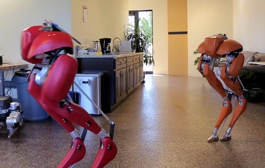 Cassie: Zwei Nurbeinbots latschen durchs Büro