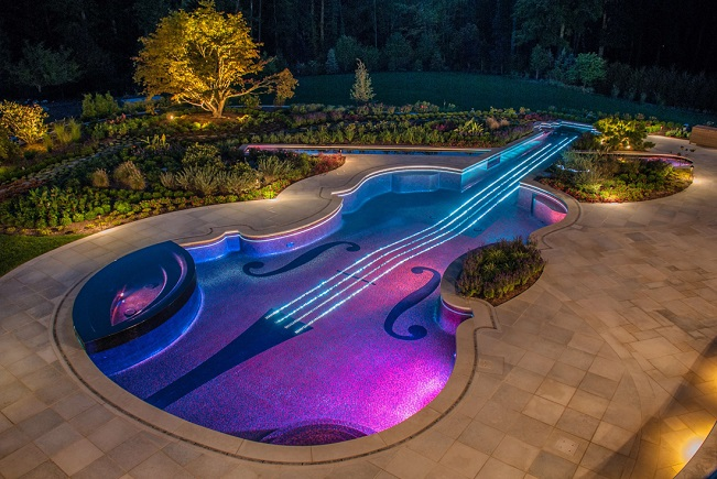 Jay Dweck violin swimming pool nightg