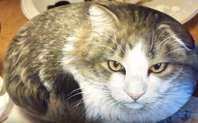 【びっくり!】ネコと思ったら石だった