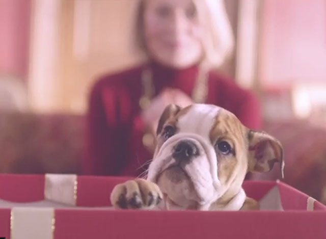 mulberry christmas advert