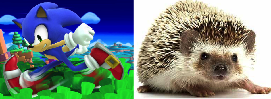 Animals in games vs their real life counterparts