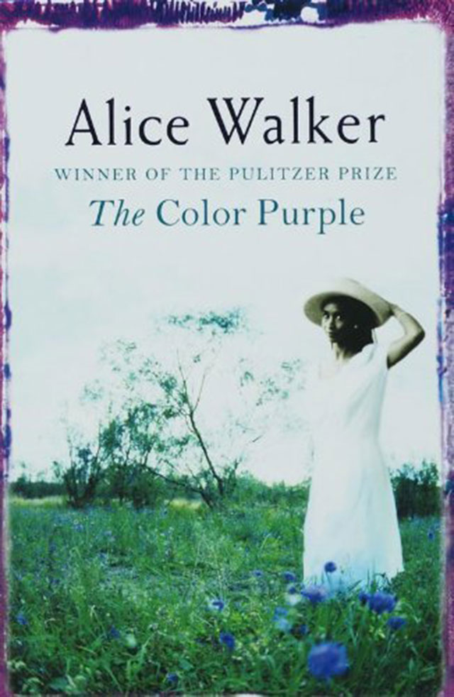 an overview of celies strengths as an african american woman in the color purple by alice walker A black southern woman struggles to find her identity after suffering abuse from her father and others over four decades.