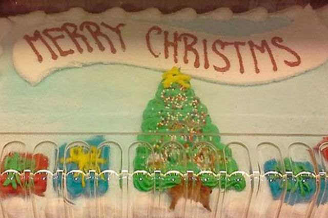 Christmas cake decorating fails