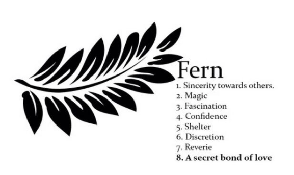 Harry Styles fern tattoo