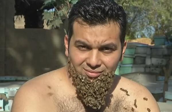 「ミツバチの髭」を生やしたエジプト人男性が話題に