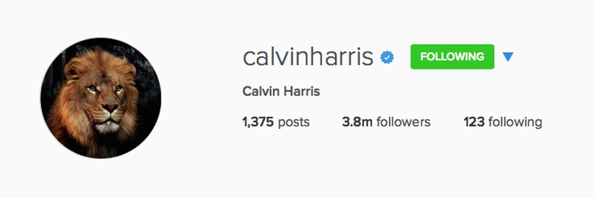 Calvin Harris lion Instagram