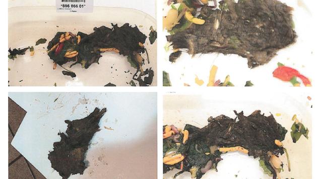 carcasse d 39 animal dans une salade un normandin de qu bec. Black Bedroom Furniture Sets. Home Design Ideas