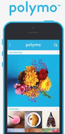 Polymo screenshot