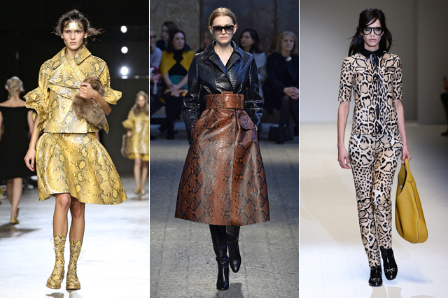 snakeskin, catwalk, fashion trends