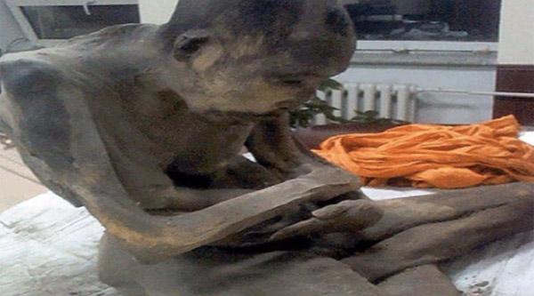 200歳の僧侶のミイラが発見!「死んでない、深い瞑想に入ってるだけ」【動画】