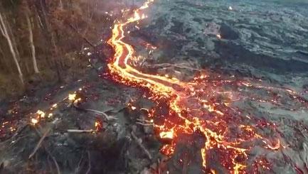 Hawaiian volcano's lava flow engulfs forest