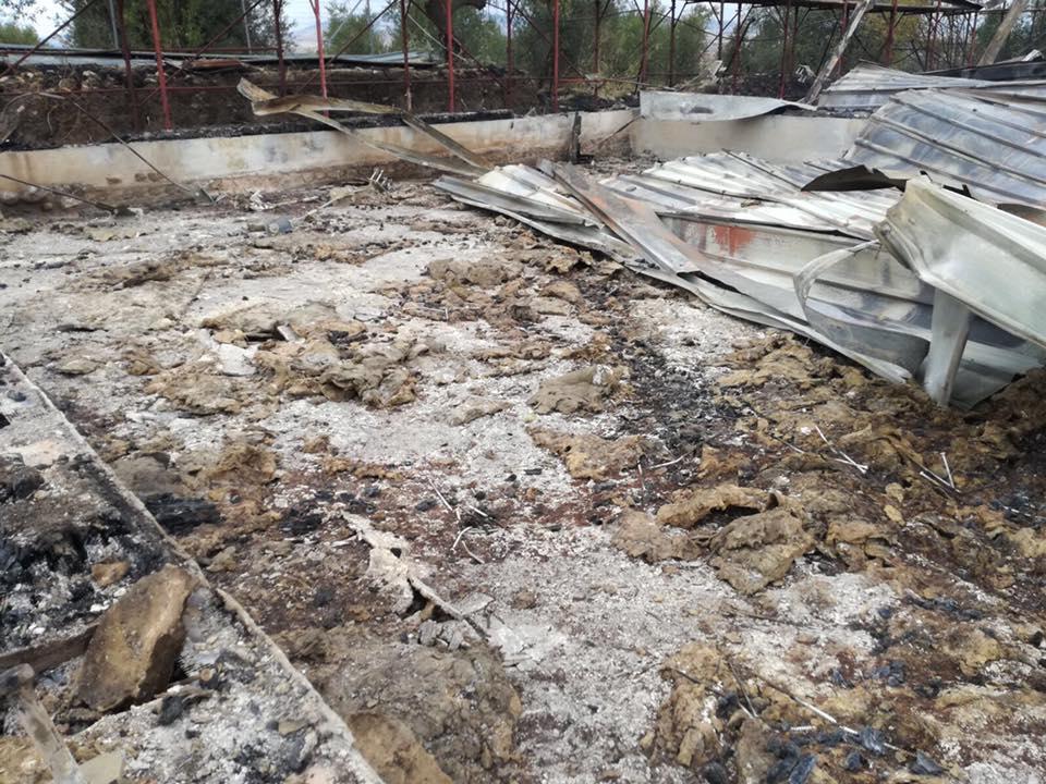 Incendi, distrutto il sito archeologico villa Faragola nel Foggiano