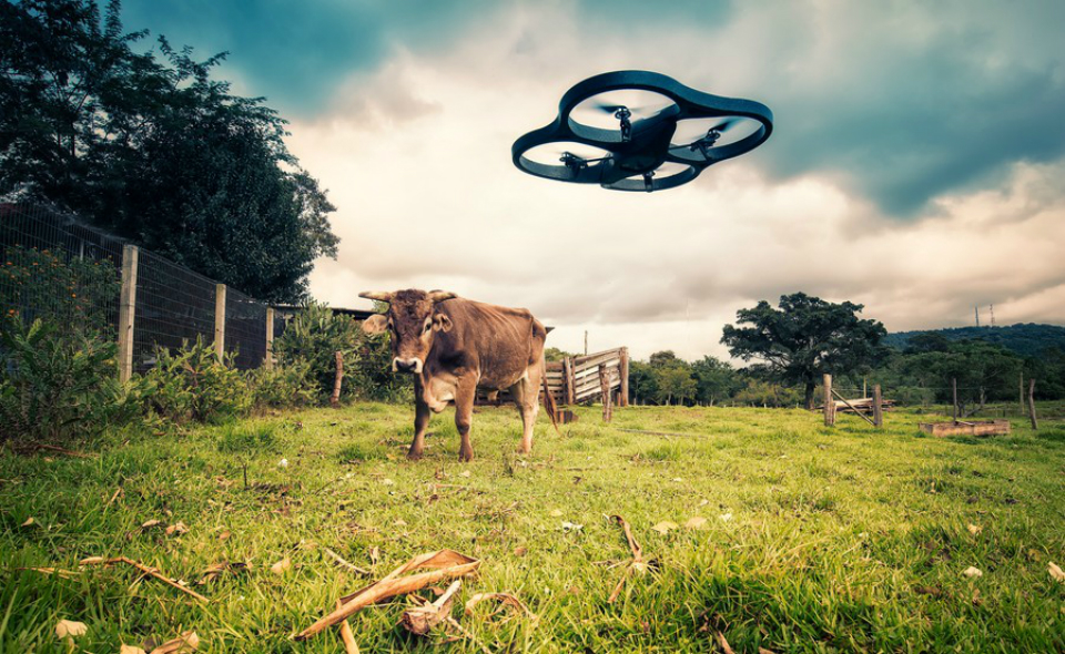 What you should know before flying a drone in the UK