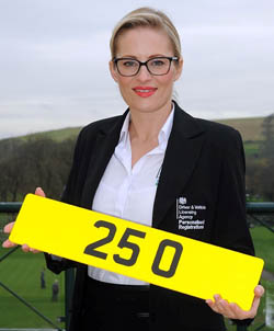 The record-breaking license plate 25 O
