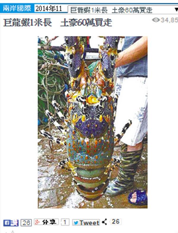 中国で発見された巨大ニシキエビが1130万円で売却!→一攫千金を求める猟師が急増