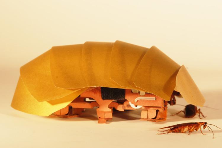 Video: Panzer macht Kakerlaken-Bot extrem quetschbar
