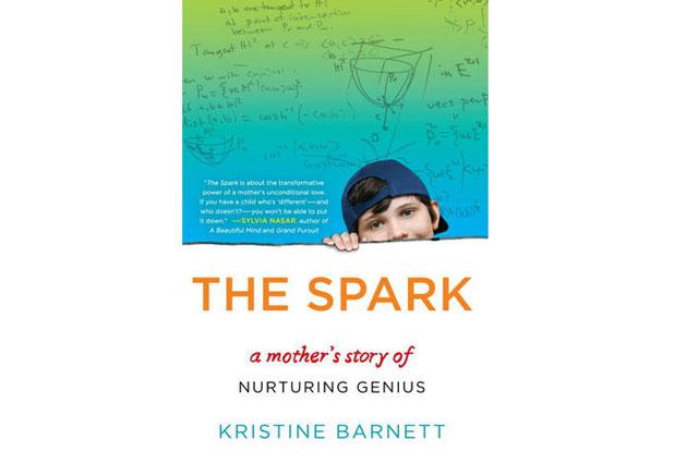 The Spark Book