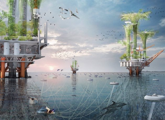Inhabitat's Week in Green: oil rig oasis, bio-pyramids and Facebook's new home