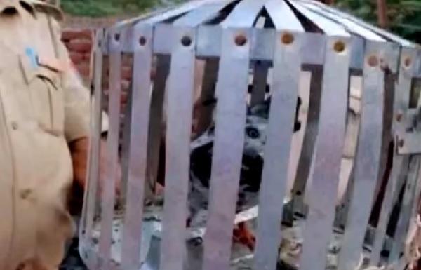 インド首相に脅迫状届けたハトが拘束される!