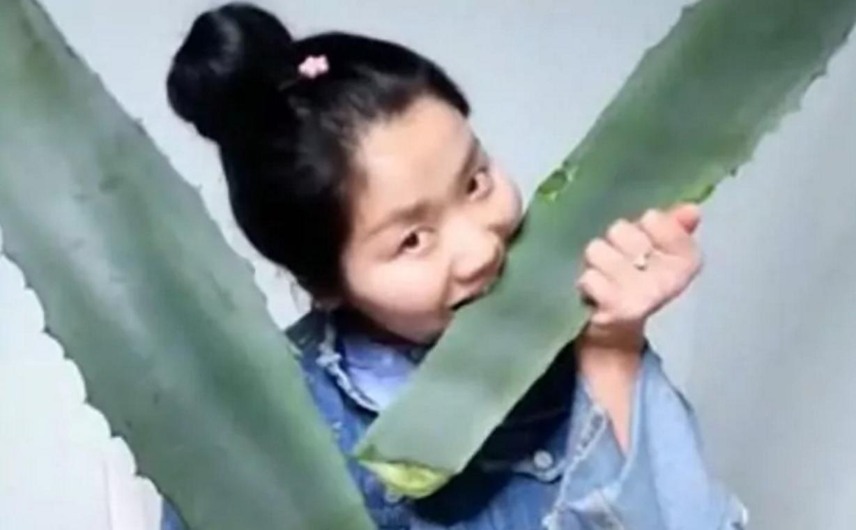 china agave americana