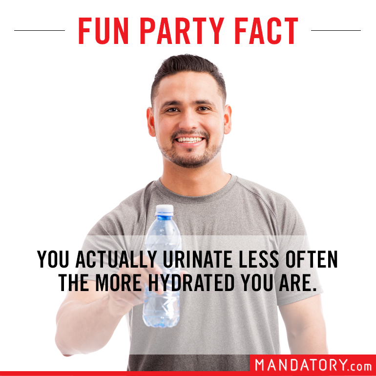 impressive sounding fake facts, fake fun facts, urinate less when hydrated
