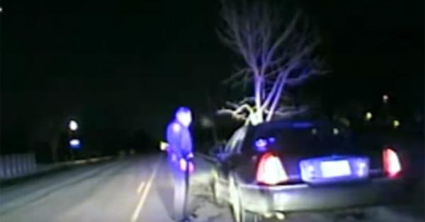 マッドマックスかよ!車体に木がぶっ刺さったまま走行していた酔っ払い女性がコワすぎる【動画】