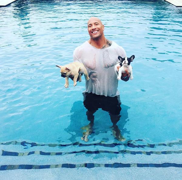 ザ・ロック様ことドウェイン・ジョンソン、溺れている子犬を助ける!イイ奴すぎると話題に