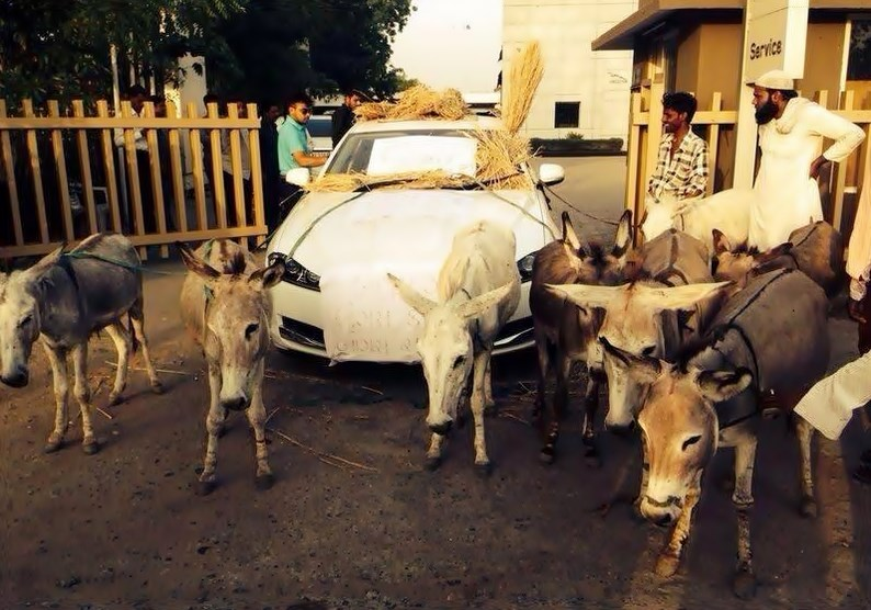 Jaguar, Jaguar XF, spott, Protest, qualität, sauer, schlecht, verspotten, Indien, minderwertig, witz, humor, funny, komisch, witzig, lustig, spott, esel,