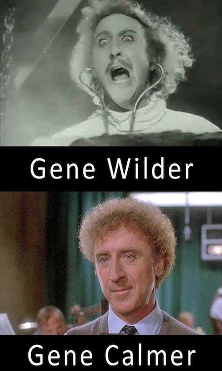 celebrity name puns, celebrity opposite names, gene wilder calmer