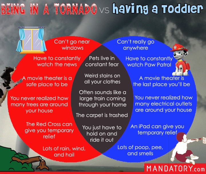 being in a tornado, having a toddler, raising a toddler, kids like tornadoes