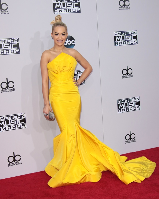 Rita Ora American Music Awards 2014