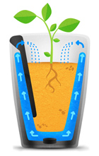 Parrot S Latest Plant Sensors Can Also Do The Watering For You