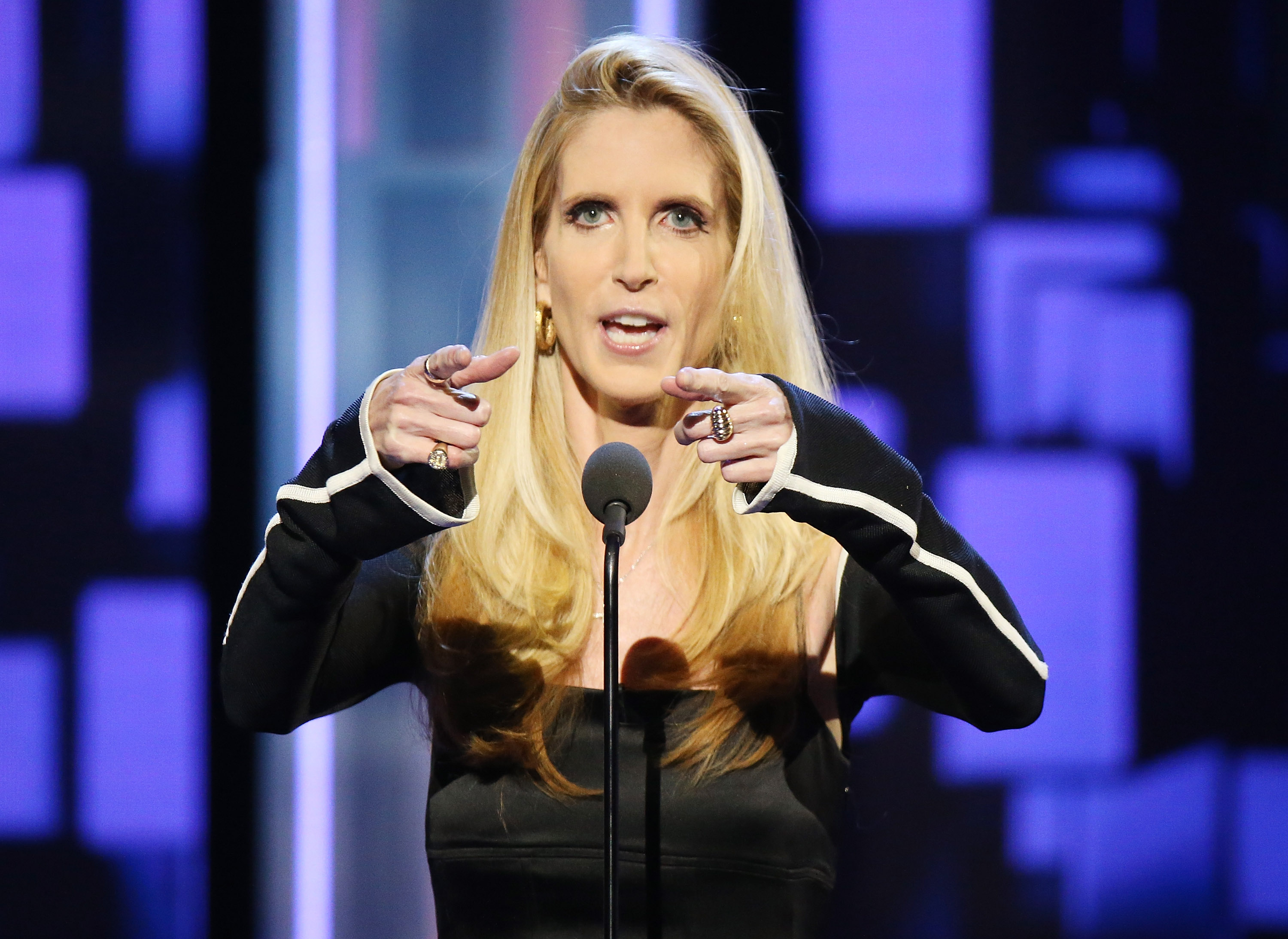 Ann Coulter says Trump may 'sell out' on immigration