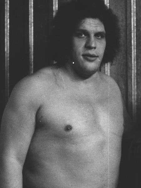 most successful drunks in history, andre the giant