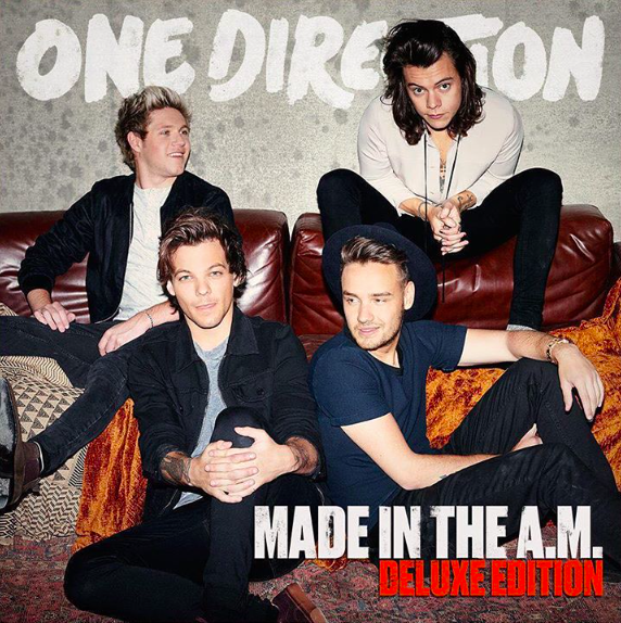 one direction made in the am all about taylor swift 1989 references