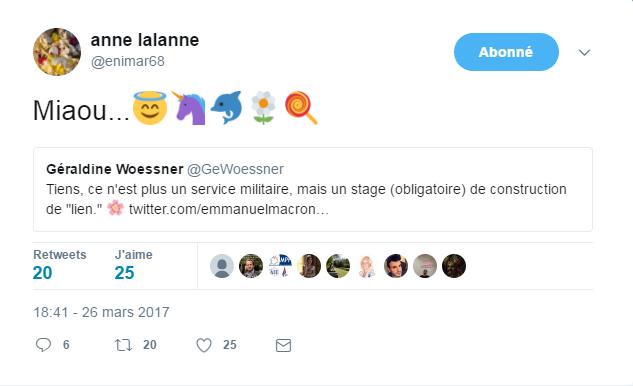 Marine Le Pen se cache bien derrière le compte Twitter d'Anne Lalanne