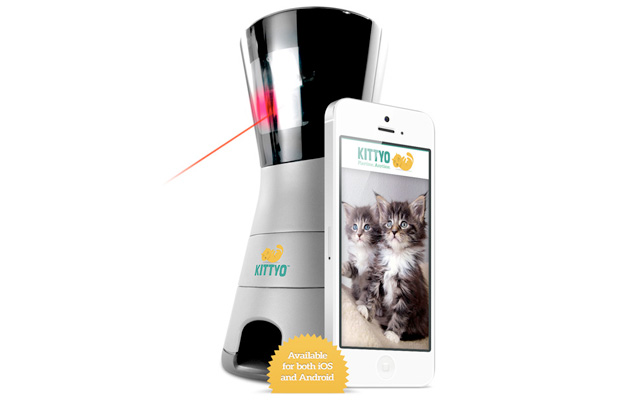 Kittyo looks after your cats so you don't have to