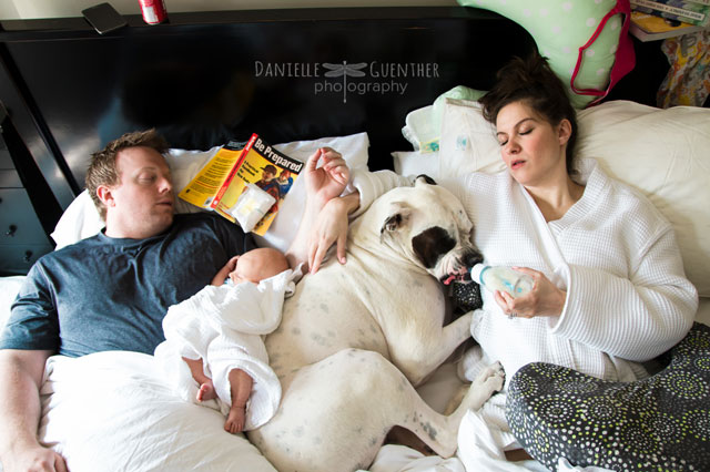 Photographer brilliantly captures the chaos of family life with hilarious photo series