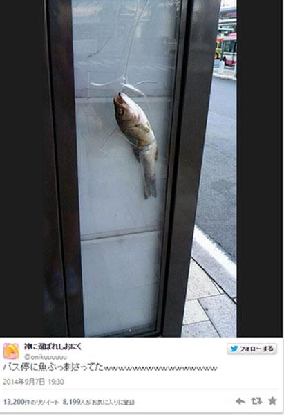 鮮魚が刺さったバス停の写真にネットも騒然 「ファフロツキーズ現象か!?」の声も