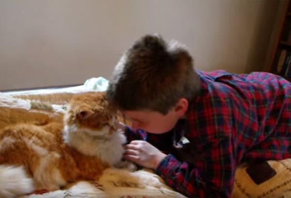 行方不明だったネコと少年の再会が感動的すぎると話題に【動画】