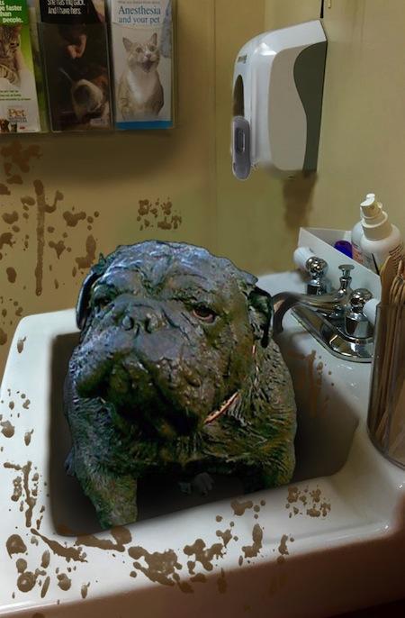 muddy dog photoshop treatment, psbattle reddit