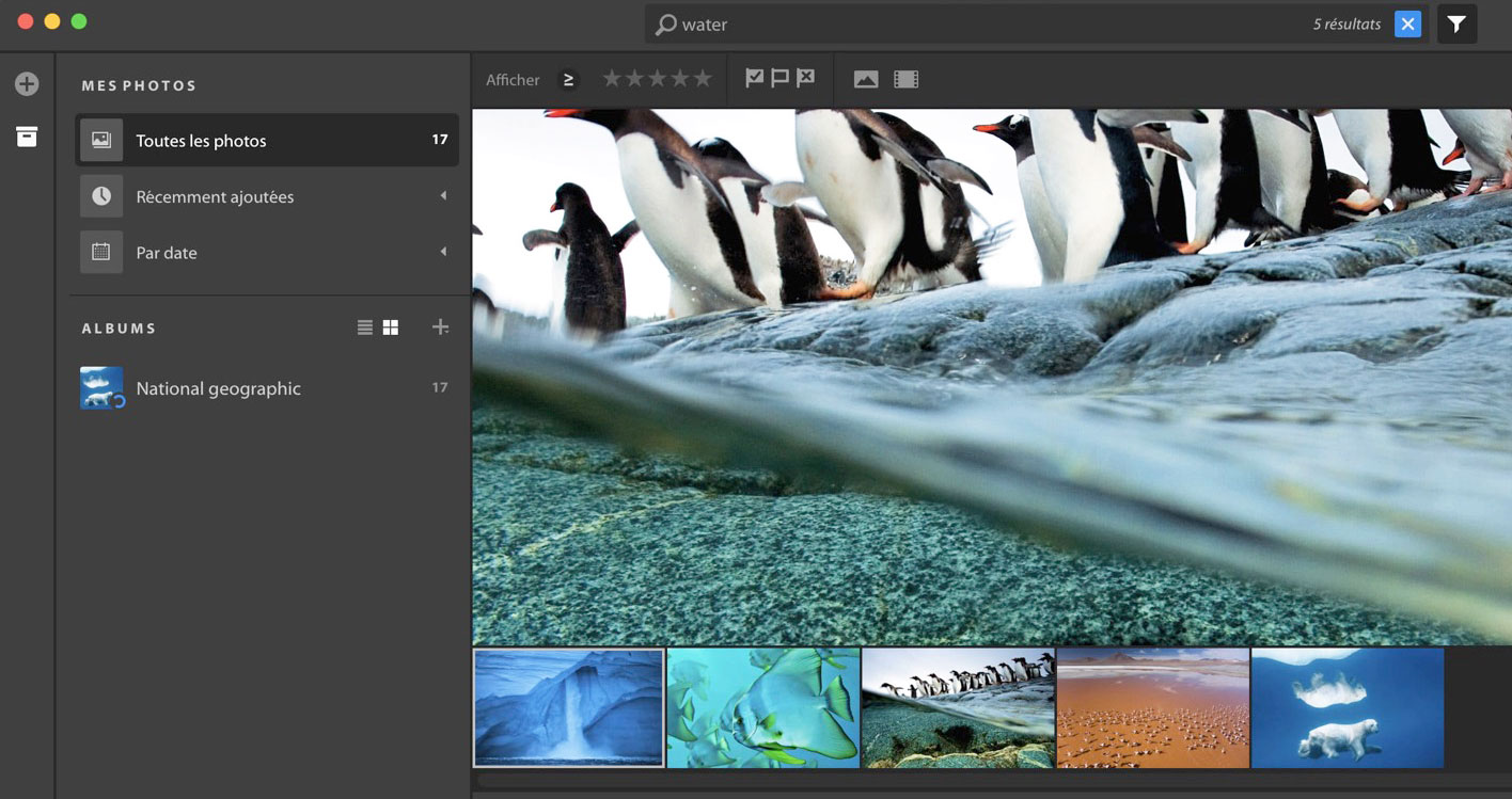 Adobe accidentally released its cloud-based photo editor