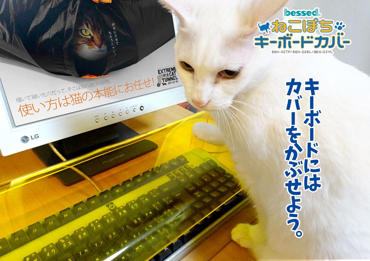 nekopochi katzen von tastaturen fernhalten auf japanisch. Black Bedroom Furniture Sets. Home Design Ideas